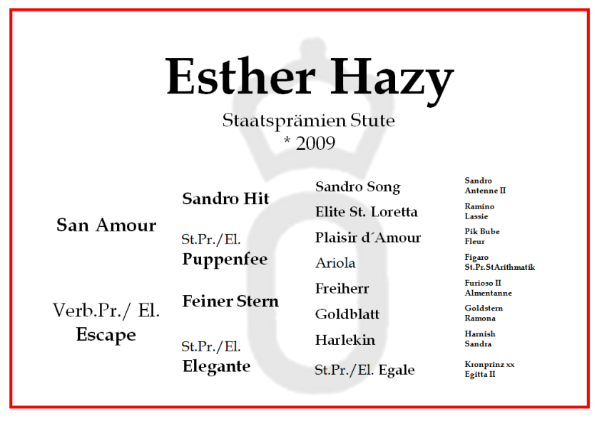 Esther Hazy neu